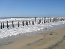 palos clavados en la orilla de la playa