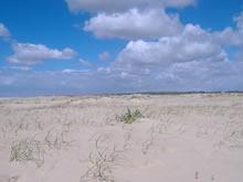 foto de playa despoblada de aguas dulces