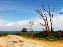 paisaje agreste de santa teresa